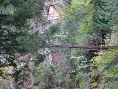 展望岩から見上げる十字峡吊橋