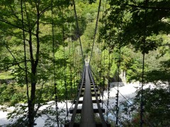 東谷吊橋を渡って右岸へ