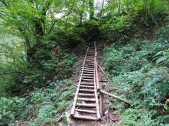 権現峠への木製の階段