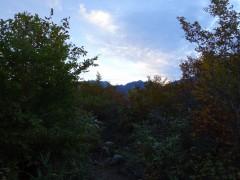 1268mピークで見る唐松岳