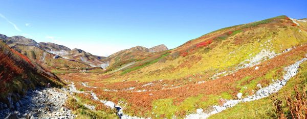 雷鳥坂を振り返り見る。中央は奥大日岳方面