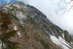北岳左俣登山道で見上げるバットレス(2014/06/24)