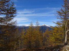 カラマツ林越しに見る白峰三山