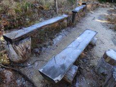 昼でも霜の残る日陰のベンチ